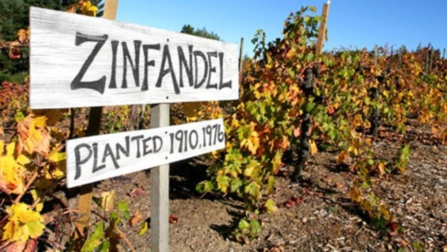 Zinfandel Sign Credit to 7x7 dot com