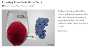 WineFolly Pinot Noir Post